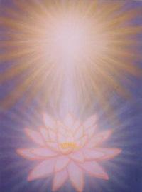 Lotus & Sun 202