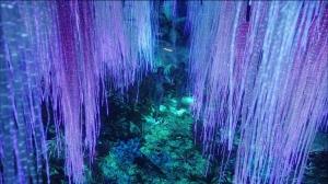 TREE OF SOULS - IBINI UKPABI - VOODOO ORACLE