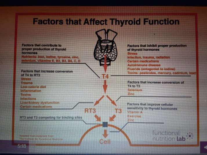 thyroid health (2)